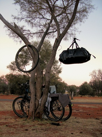 Food pannier in a tree